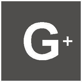Realizzazione siti web Torino - Google+