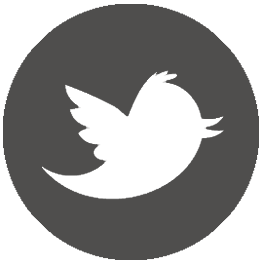 Realizzazione siti web Torino - Twitter